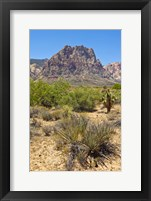 Framed Red Rock Canyon National Conservation Area, Las Vegas, Nevada