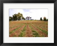 Framed Barn and Silo, Colts Neck Township, New Jersey