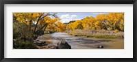Framed Rio Grande River, Pilar, New Mexico