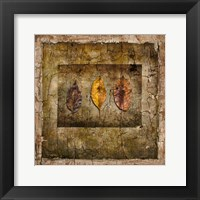 Framed Autumn Leaves I