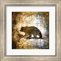 Framed High Country Bear