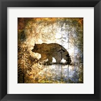 Framed High Country Bear