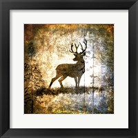 High Country Deer Framed Print