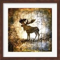 Framed High Country Moose