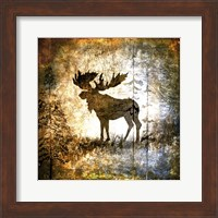 Framed High Country Moose