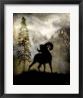 Mystic Big Horn Framed Print