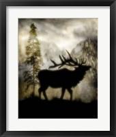 Framed Mystic Elk