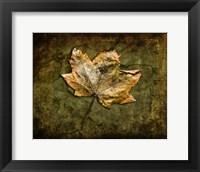 Framed Metallic Leaf 1