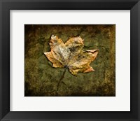 Framed Metallic Leaf 1