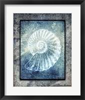 Framed Hello Beach Shell I
