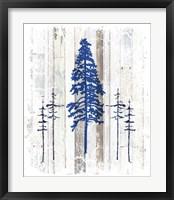 Framed Blue Moose - Lodge Pole Pine