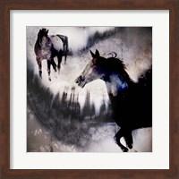 Framed Black Mare - Dream 1