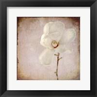 Framed Paper Magnolia