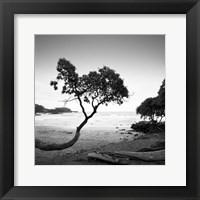 Framed Koki Beach