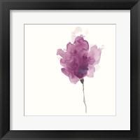 Framed Expressive Blooms I