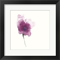 Framed Expressive Blooms II