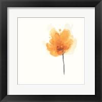 Framed Expressive Blooms IX