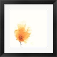 Framed Expressive Blooms X
