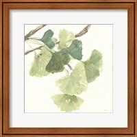 Framed Gingko Leaves I Light