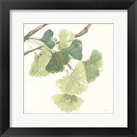 Framed Gingko Leaves I Light