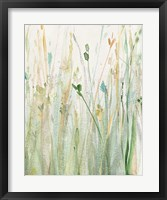 Framed Spring Grasses II Crop