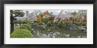 Framed Trees in Pond at Sanjusangen-Do Temple, Kyoto, Japan