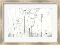 Framed Poppy Sketches I