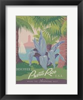 See South America IV Framed Print