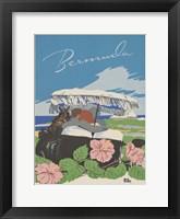 See South America VI Framed Print