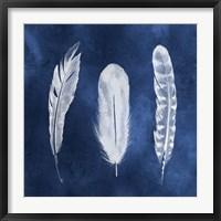 Framed Cyanotype Feathers I