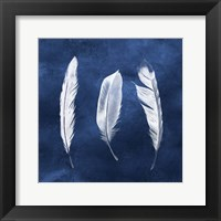 Framed Cyanotype Feathers II