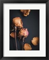 Wilted Dreams I Framed Print