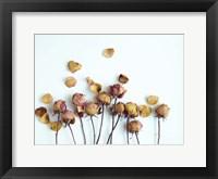 Golden Petals II Framed Print