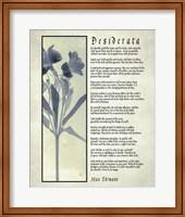 Framed Desiderata Blue Daguerreotype