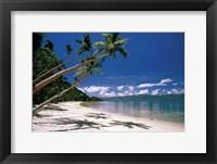 Framed Oceania, Fiji Island