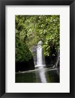 Framed Tobu Vei Tui Waterfall, Tavoro NP, Taveuni, Fiji