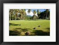 Framed Lawn bowling, Taveuni Estates, Taveuni, Fiji