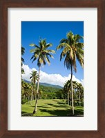Framed Golf course, Taveuni Estates, Taveuni, Fiji