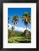 Framed Golf course, Taveuni Estates, Taveuni, Fiji