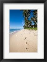 Framed Lavena Beach in Taveuni, Fiji