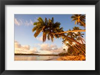 Framed Shangri-la Fijian Resort and Spa, Coral Coast, Viti Levu, Fiji