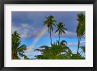 Framed Rainbow, Taveuni, Fiji