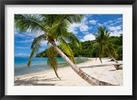 Framed Beach and Palms, Waitatavi Bay, Vanua Levu, Fiji
