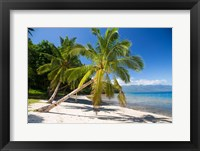Framed Beach & Palms, Waitatavi Bay, Fiji