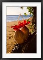 Framed Matangi Private Island Resort, Fiji