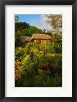 Framed Lush Gardens, Matangi Private Island Resort, Fiji