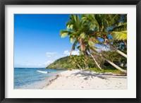 Framed Narena Beach, Vanua Levu, Fiji