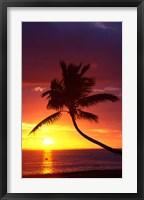 Framed Sunset and Palm Trees, Coral Coast, Viti Levu, Fiji