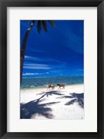 Framed Palm Trees and Horses, Tambua Sands, Coral Coast, Fiji