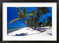 Framed Tambua Sands,Fiji